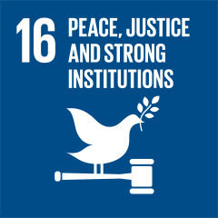 16 PEACE AND JUSTICE STRONG INSTITUTIONS
